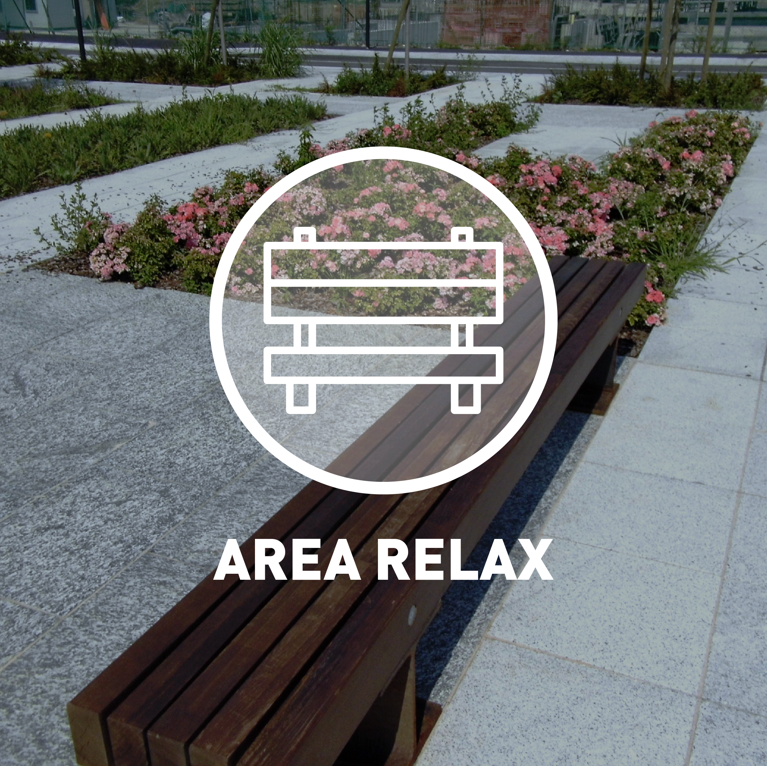 AREA RELAX